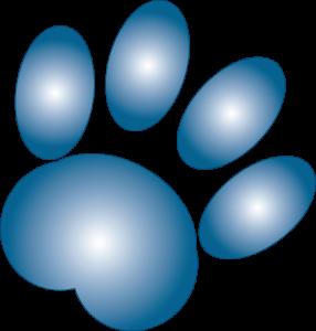 gradient paw