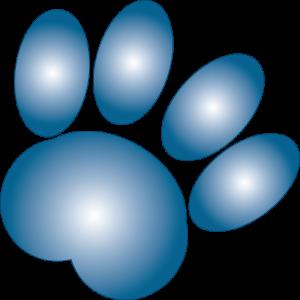 BlueHound Favicon