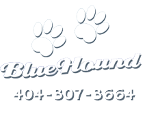 Blue Hound Paws and Phone Number