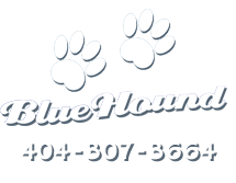 Blue Hounds Paws and Phone Number